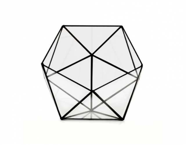 Геометрический флорариум Икосаэдр M (Пустой )
