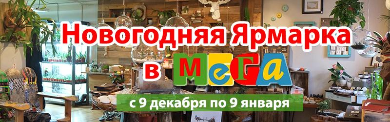Хищные растения на Новогодней Ярмарке в МЕГА Уфа!