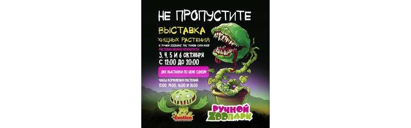 Exotica второй раз в Тюмени