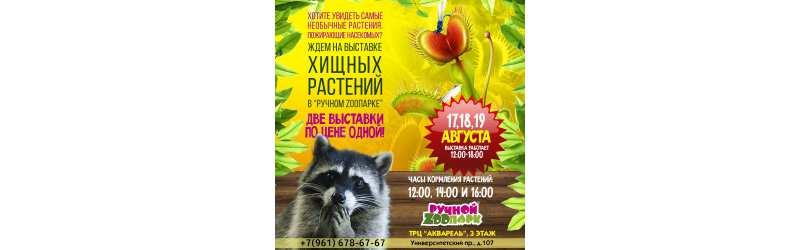 Выставка Хищных растений в Волгограде