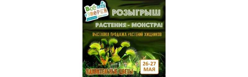 Хищные растения снова в Екатеринбурге